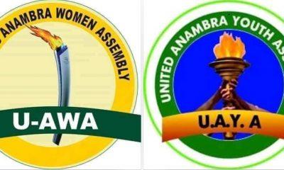 Anambra 2021: Groups Call For Sack Of Hon Umeoji From APGA