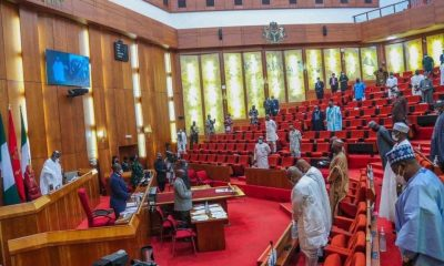 We Can't Give You A New Constitution, Senate Tells Nigerians