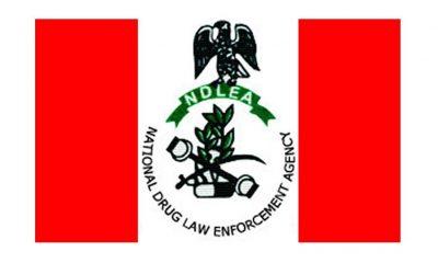 NDLEA Not Recruiting Members – Spokesperson