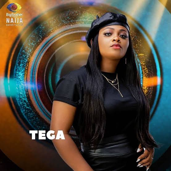 BBNaija: I cheated on her in our matrimonial home – Tega's husband