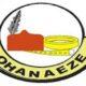 Igbo presidency: Gov Uzodinma a traitor, will face repercussions – Ohanaeze
