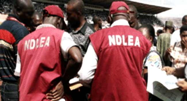 NDLEA sets to take drug war to universities