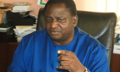 With All FFK Said About Buhari, I Expected APC To Tell Him To Go To Hell - Adesina