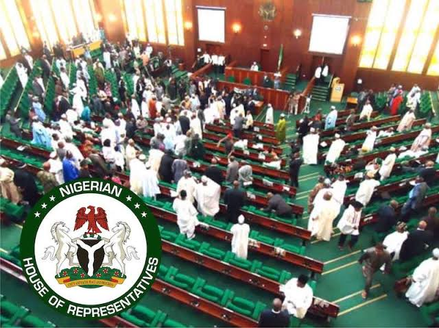 UNGA: Buhari's Speech Lacked Personal Commitments, Contained Lies — PDP Reps