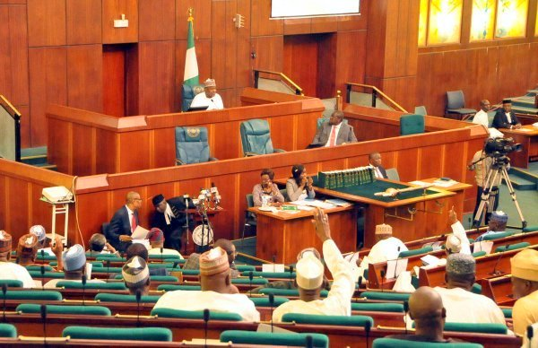 House rejects motion to investigate 'harassment' of protesters in Abuja